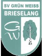 Grün-Weiß Brieselang