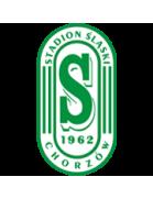 Stadion Slaski Chorzow
