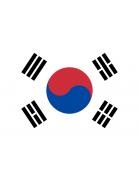 Club amateur (Corea del Sur)