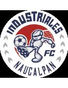 Industriales de Naucalpán