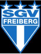 SGV Freiberg U19