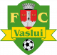 FC Vaslui U19 (ext.)