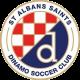 St Albans Saints SC