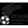SV Falke Steinfeld