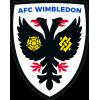 AFC Wimbledon U19