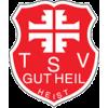 TSV Heist