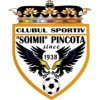 CS Soimii Pancota