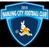 Nanjing Fengfan