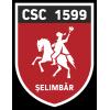 CSC 1599 Selimbar