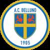 AC Belluno 1905