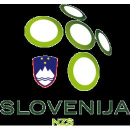 Slovenya U17