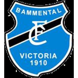 FC Bammental U19