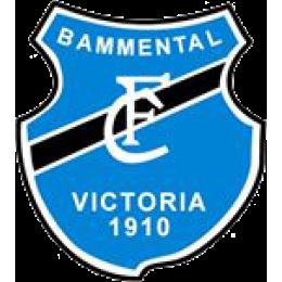 FC Bammental II