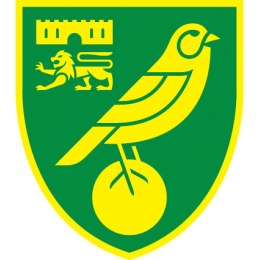 Norwich City Youth