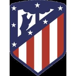 Атлетико Мадрид Футбольная База