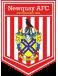 Newquay FC