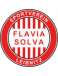 SV Flavia Solva Jugend