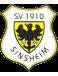 SV Sinsheim