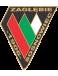 Zaglebie Sosnowiec II