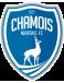 FC Chamois Niort B