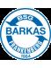 SV Barkas Frankenberg
