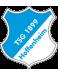 TSG 1899 Hoffenheim Juvenis