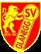 SV Glanegg