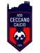 Ceccano Calcio