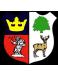 Cinderford Town FC