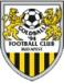 FC Goldball Budapest