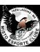 Misto Esporte Clube (MS)