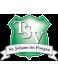 TSV St. Johann Youth