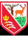 Hayes FC