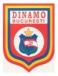 FC Dinamo Bucarest