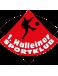 1. Halleiner SK Youth