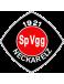 SpVgg Neckarelz II