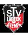 TSV Siems U17