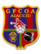 Gazélec Football Club Olympique Ajaccio