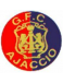 Gazélec Football Club Olympique Ajaccio