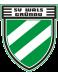 SV Wals-Grünau Jugend