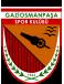 Gaziosmanpasa Formation