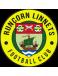 FC Runcorn Linnets