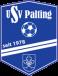 USV Palting Altyapı