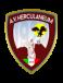 AV Ercolanese 1924
