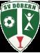 SV Döbern