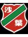 Nanjing Shaye (-2019)