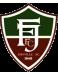 Fluminense Futebol Clube (SC)