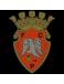 FC Penafiel U15