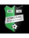 FK Homoljac Zagubica