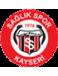 Kayseri Saglikspor